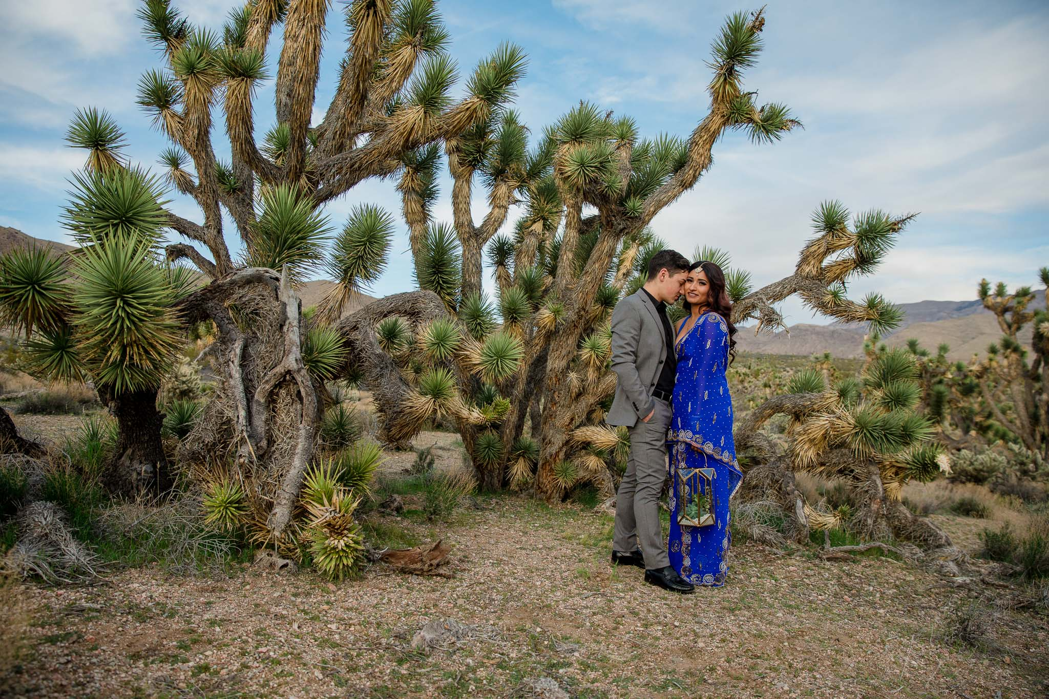 Interracial couple snuggle next to a Joshua Tree during their adventure elopement in Utah