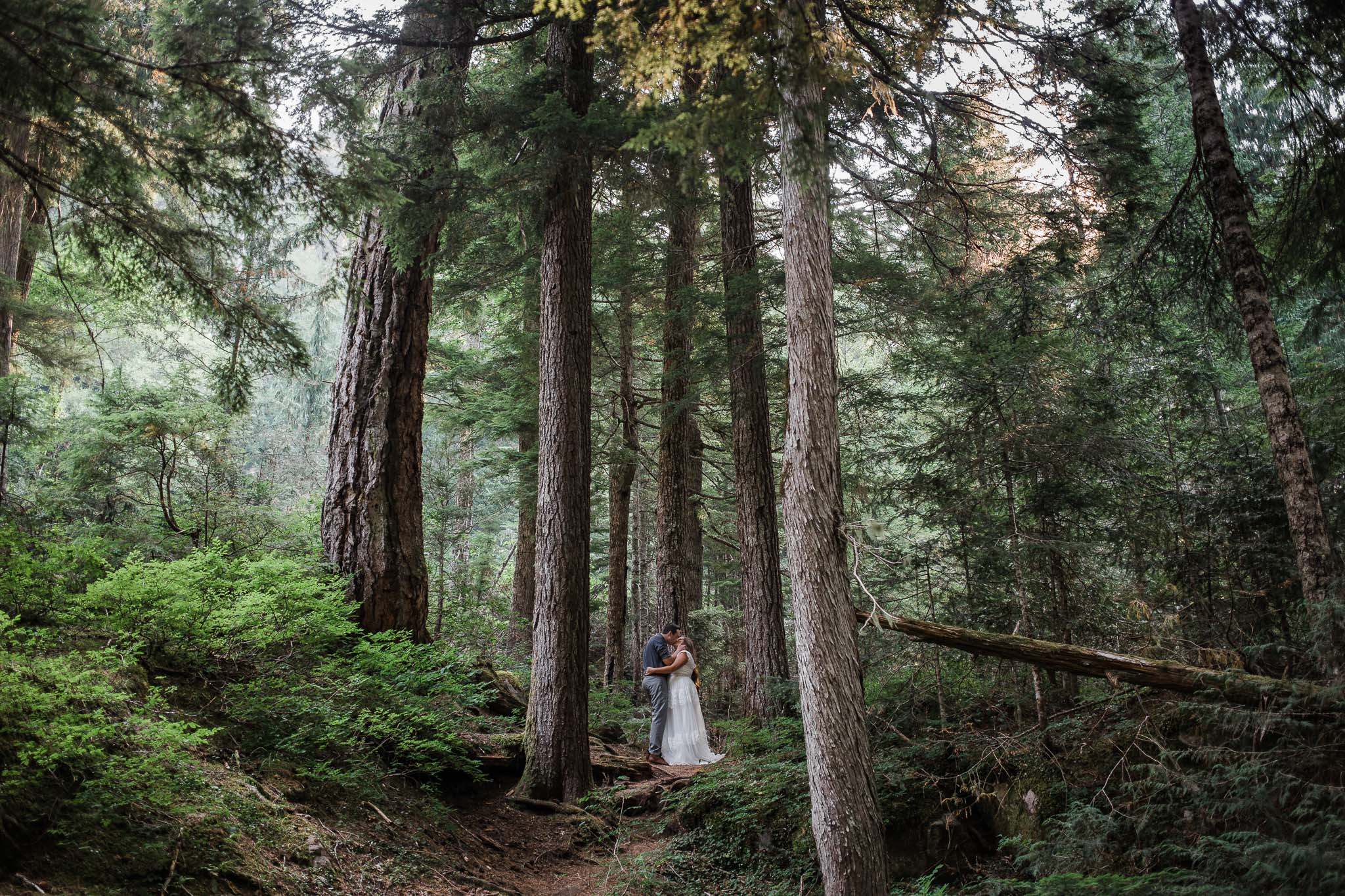 Adventure Wedding Photographer Mt Rainier National Park
