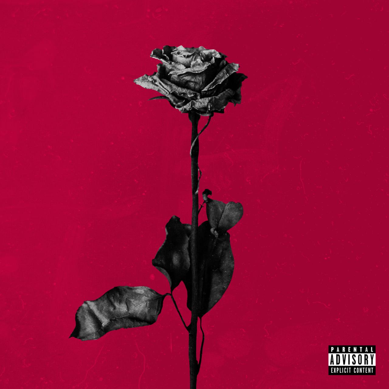 """BLACKBEAR """"DEAD ROSES"""" 2015"""