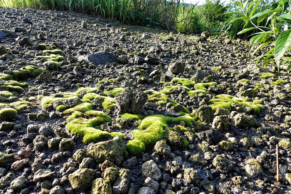 Asoka-Remadja---Mount-Kelud-4.jpg