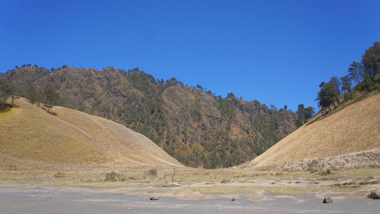 Asoka-Semeru-8.jpg