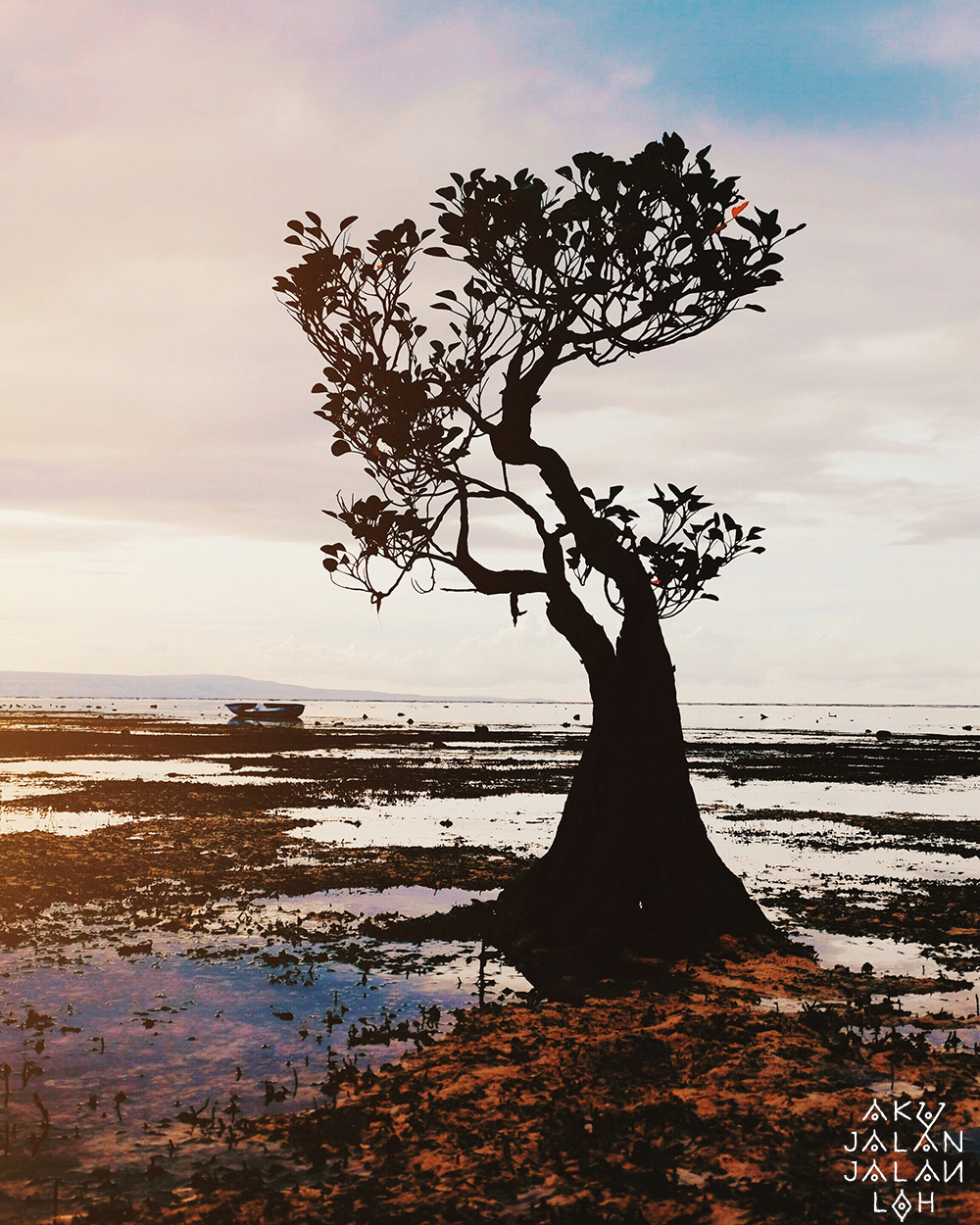 Pantai-Walakiri-Sunset-Sumba-Timur-5.jpg