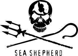 sea shepherd logo.png