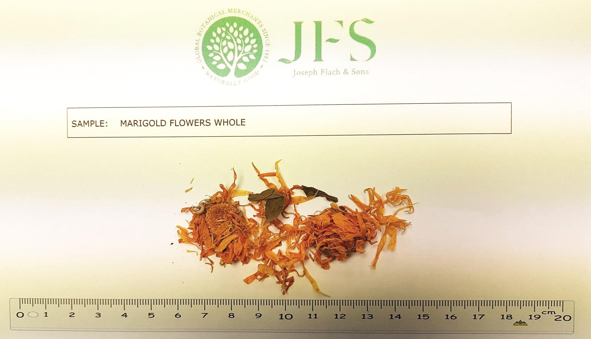 marigold+flowers+whole+JFS+sample.jpg