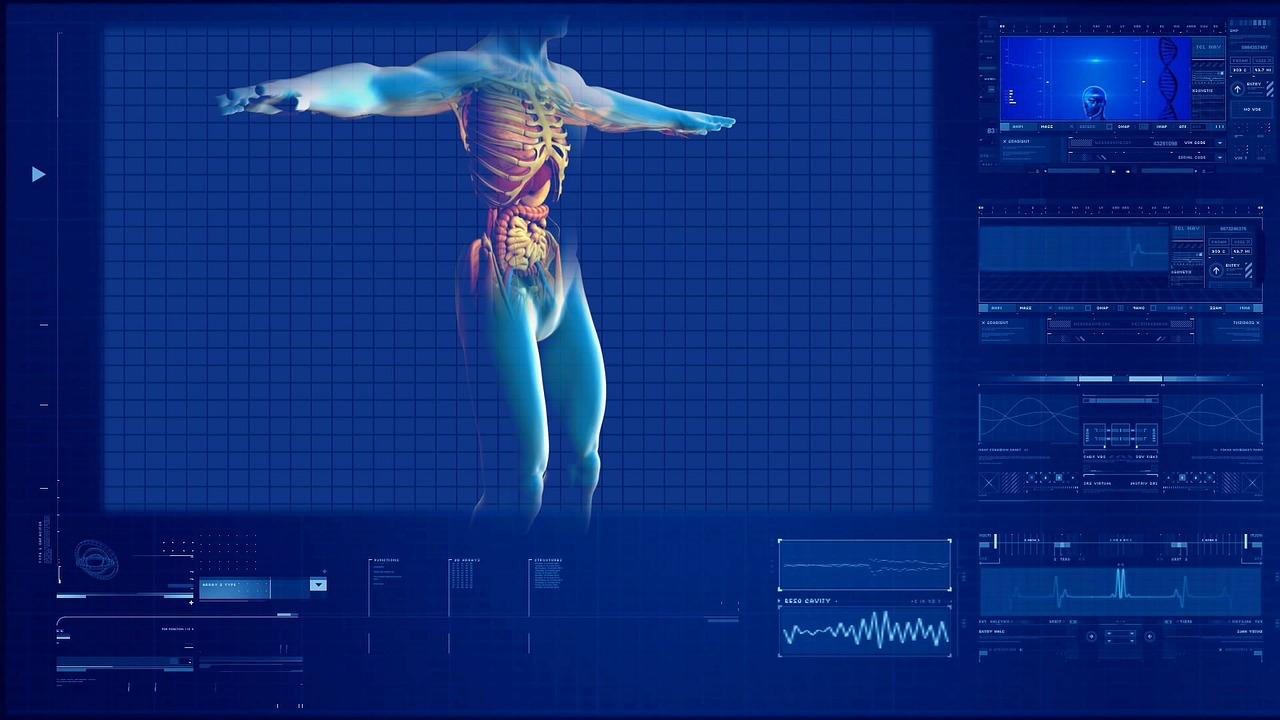 human-digestive-system-163714_1280.jpg