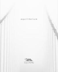 equilibrium cover.JPG