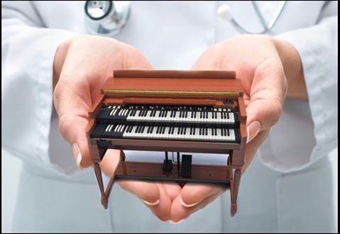 The Organ Donors