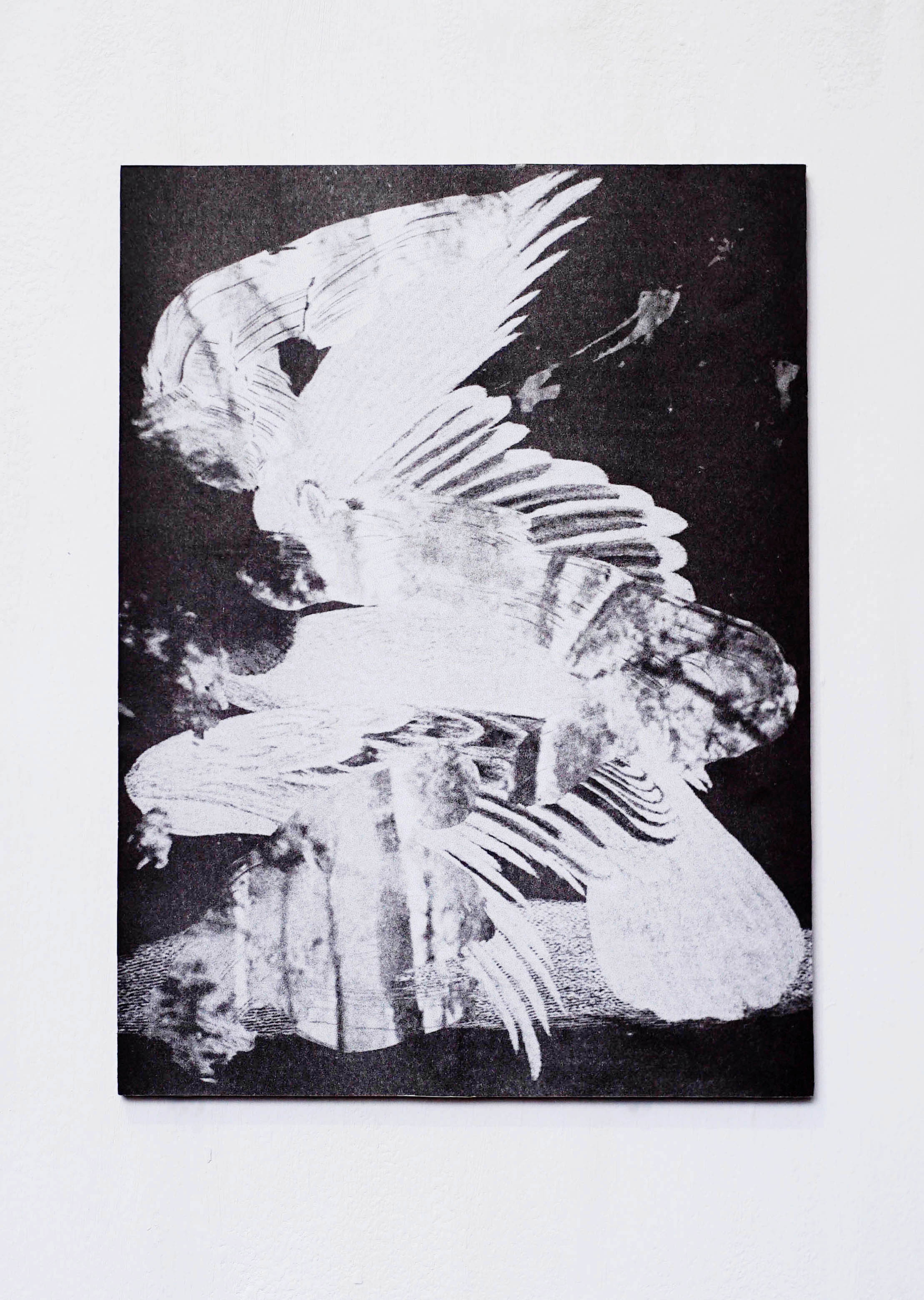 Vulture's wings,  2019, 38 x 48cm, Grain touch risograph mounted on plywood with UV varnish.