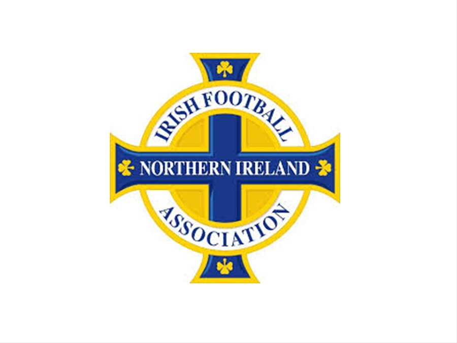 IrishFA_web.jpg