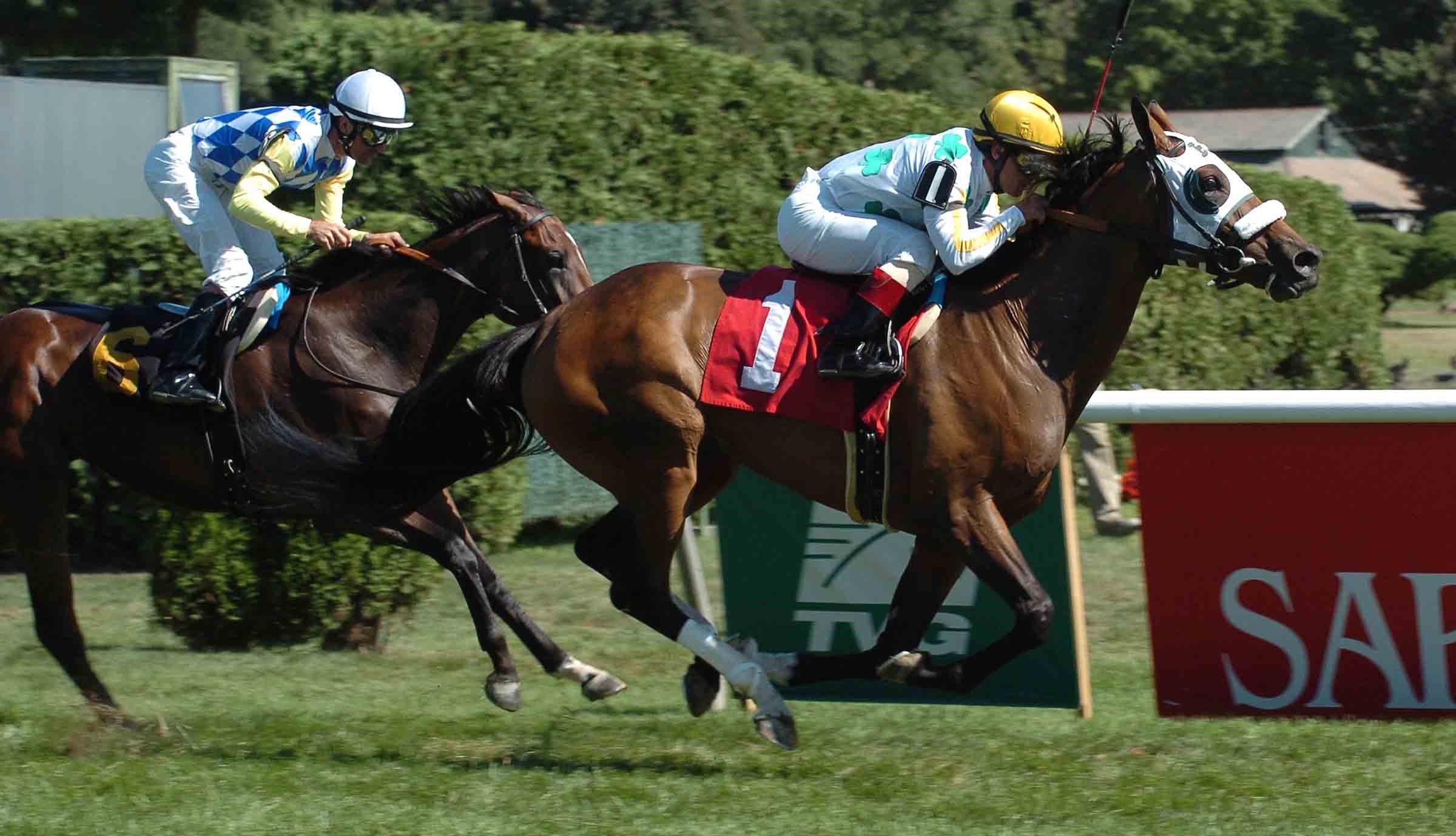 Kats Golden Ways - August 5, 2007 at Saratoga