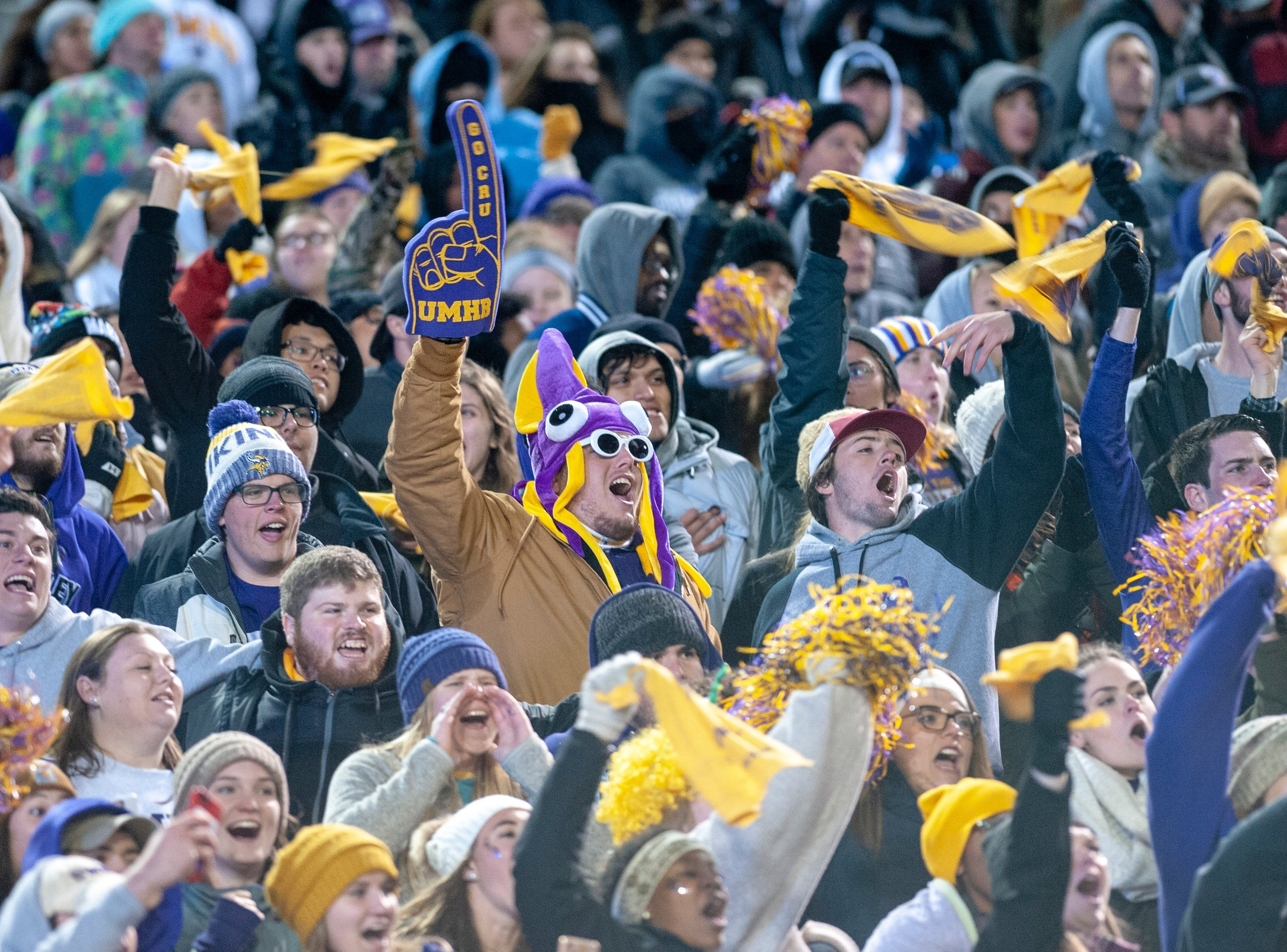 celebration-crowd-fans-2190115.jpg