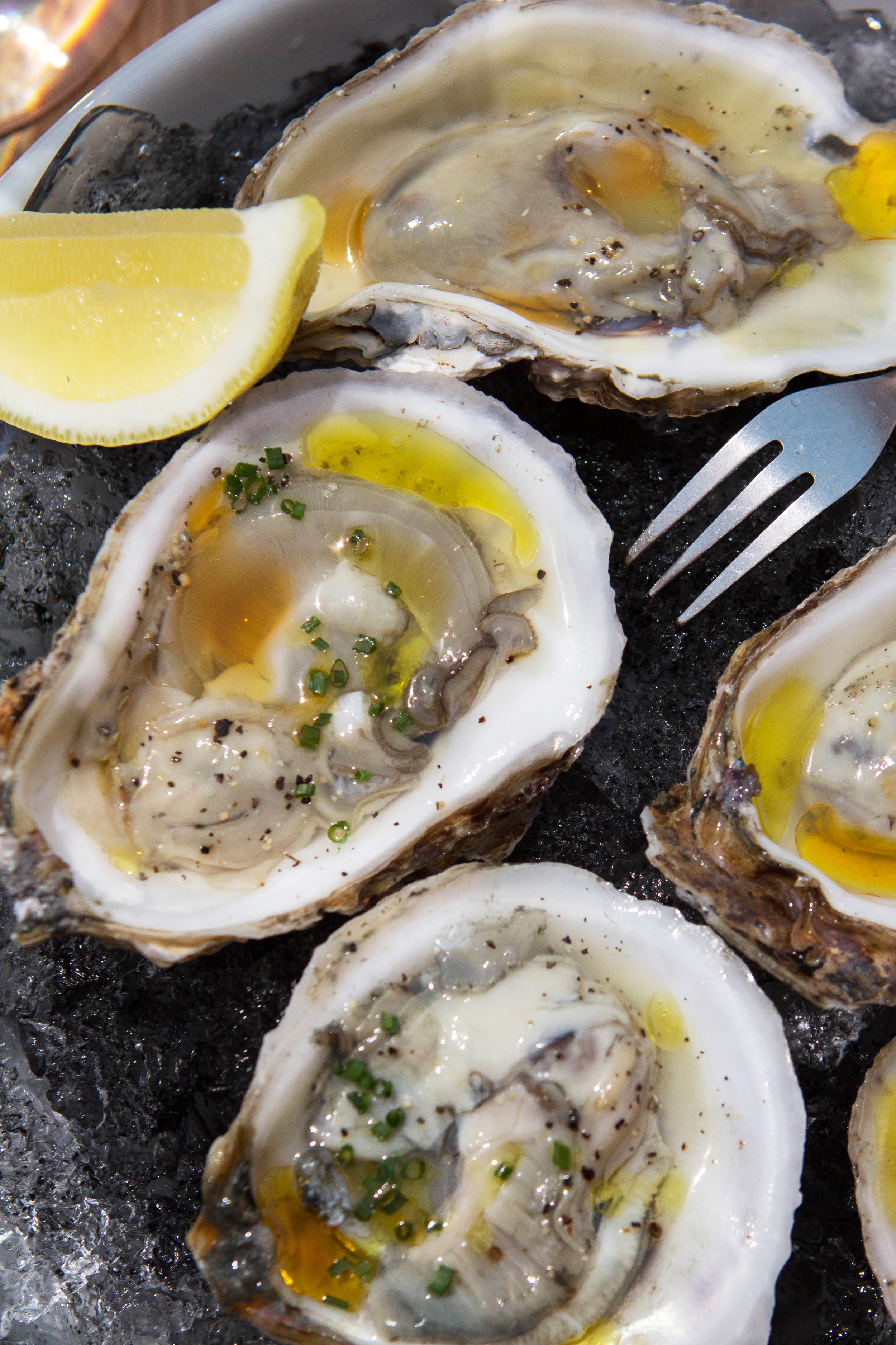 zinc-new-haven-oysters