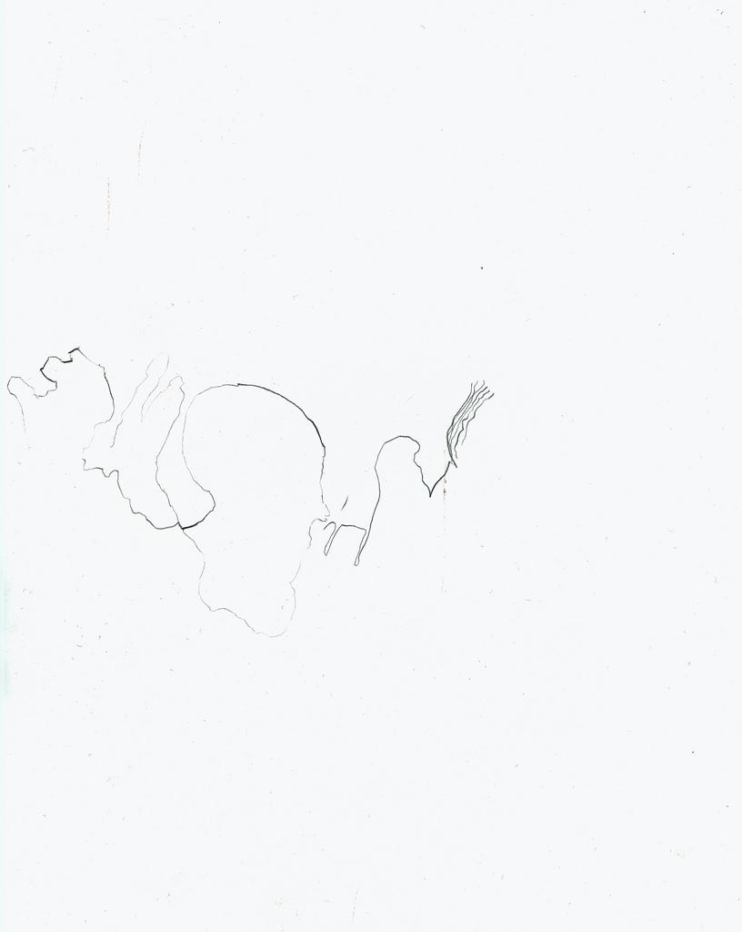 drawing_niceline.jpg