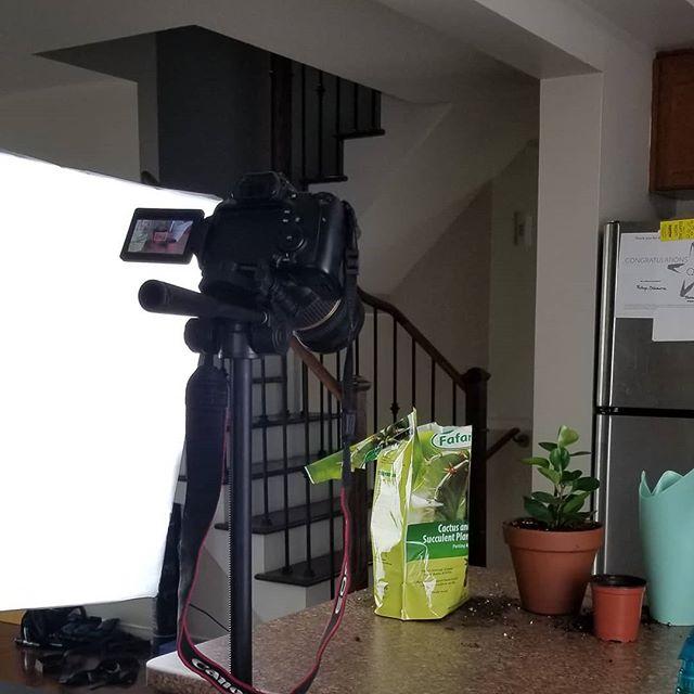 June goal: no more unpublished videos.