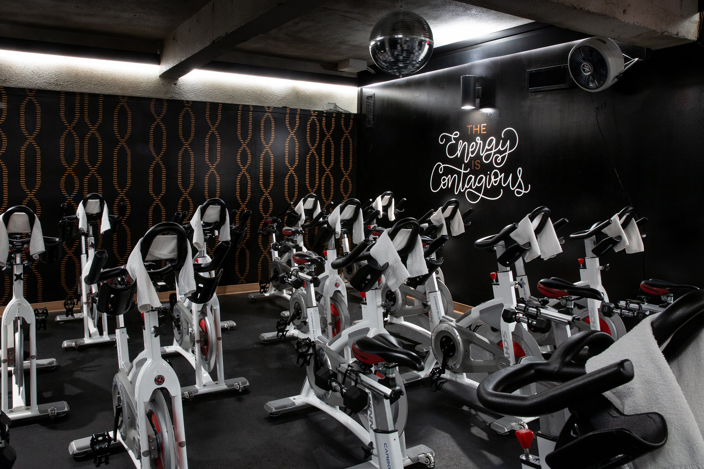 Natasia Designs Edmonton Alberta Graphic Designer and Hand-Lettering Artist Hive Fit Co Wall Murals Design featuring Calligraphy and a custom hand-lettered script that reflects their fitness studio branding spin row yoga classes