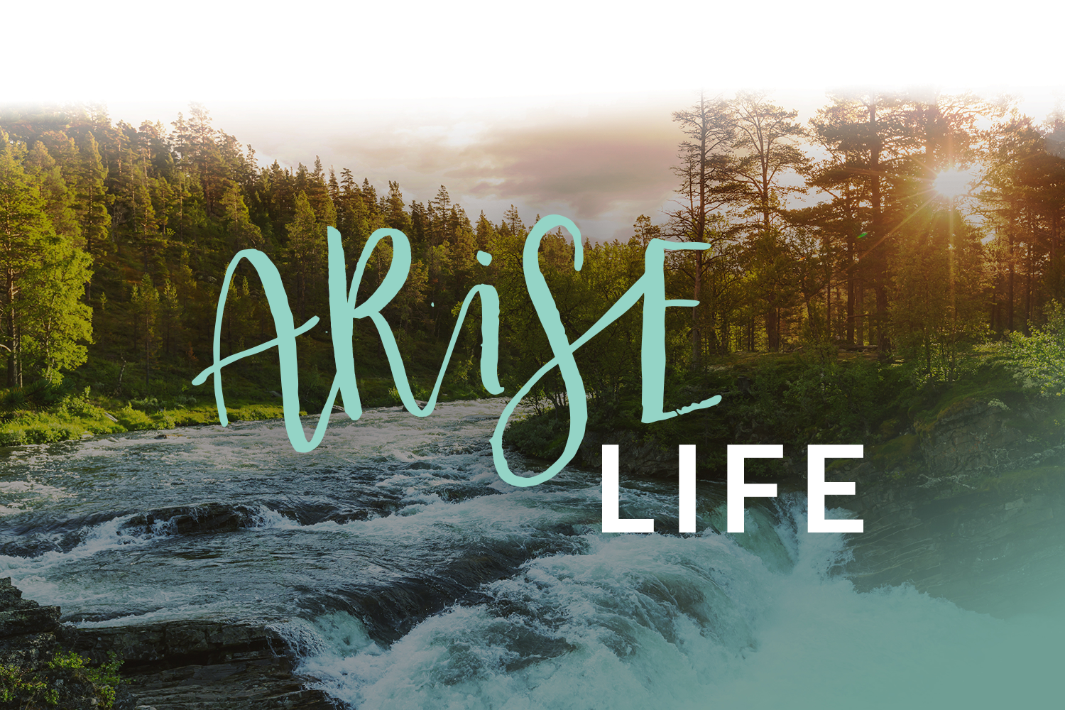 ARISE:Life is a community of believers, adopted by God on through the Cross, experiencing restoration in every area of life, building deep connections with God and others, living a naturally supernatural life, and being equipped, empowered and released into their destinies.