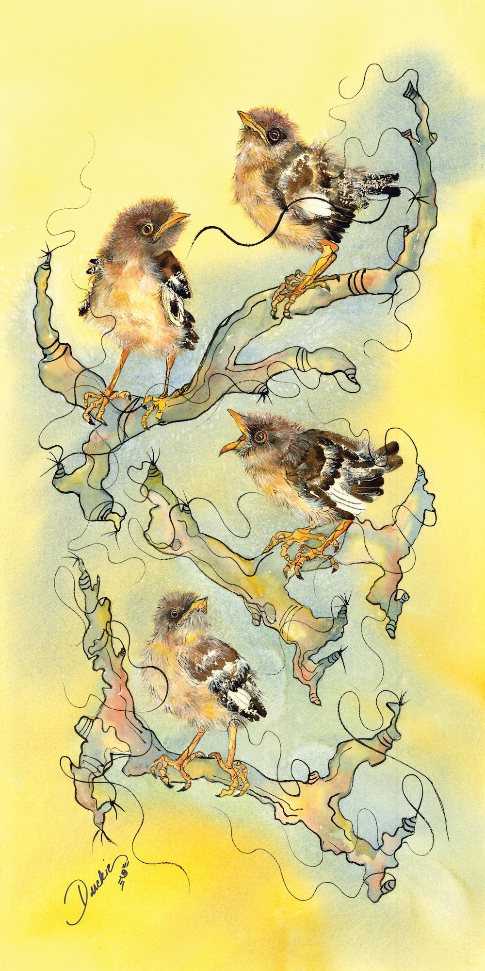 Look at Me! - baby mockingbirds