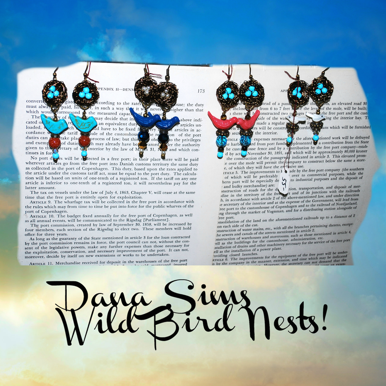 Dana Sims Wild Bird Nests.jpg