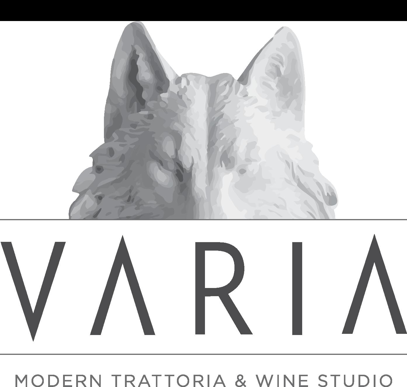 Varia_posColor_logo.png