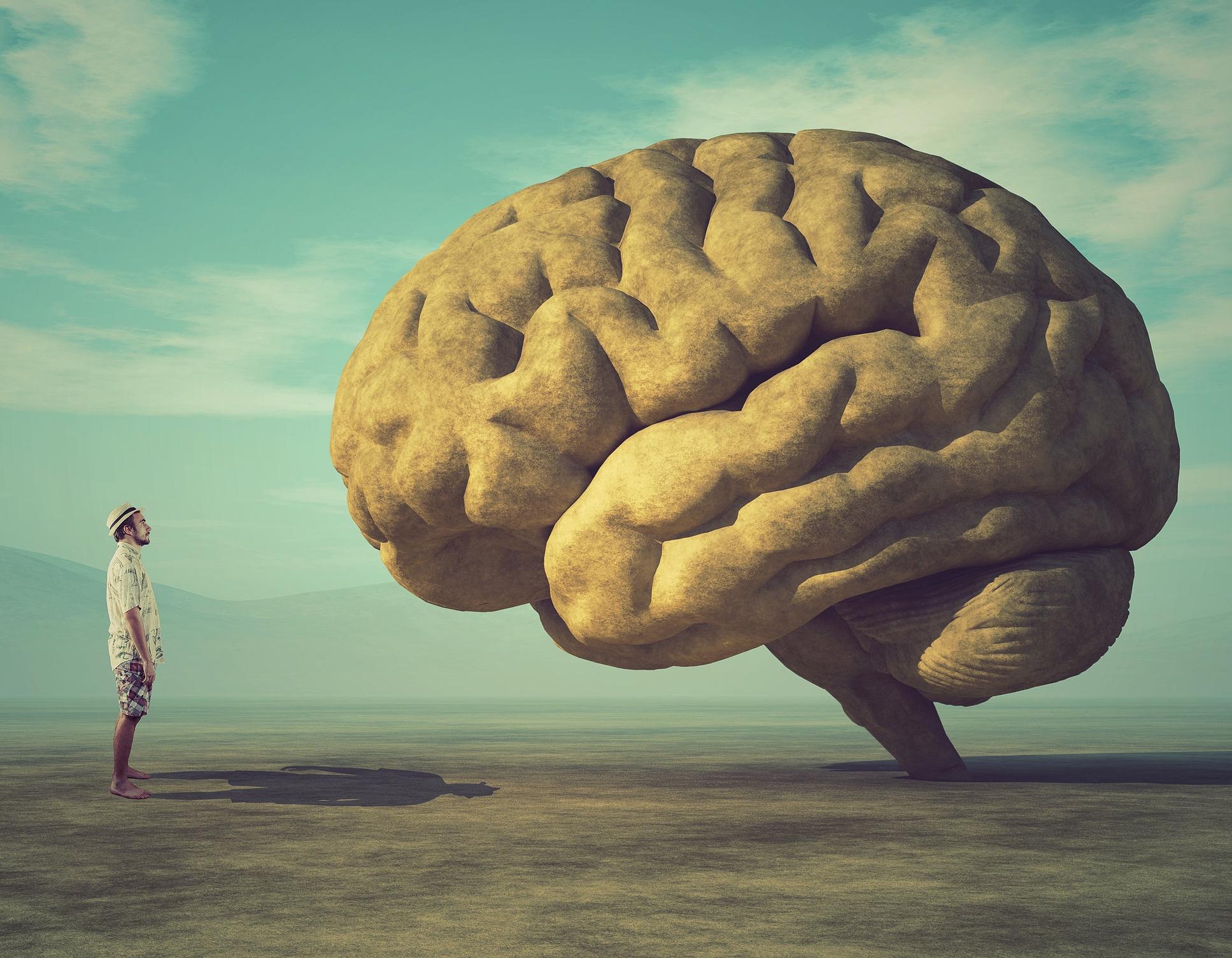 Staring at brain.jpg