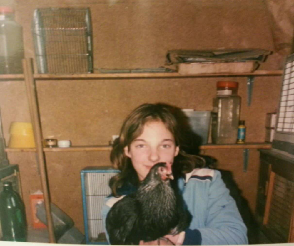 Young Taz and a chicken