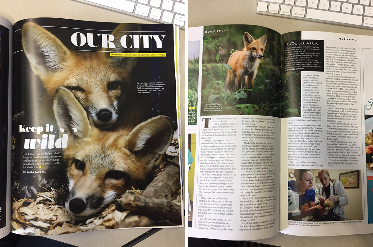 March Issue of 225 Magazine! - Thanks so much to 225 Magazine for the lovely write up on The Canid Project in the March 2018 Issue!If you can't get your hands on a copy, you may read the article online HERE