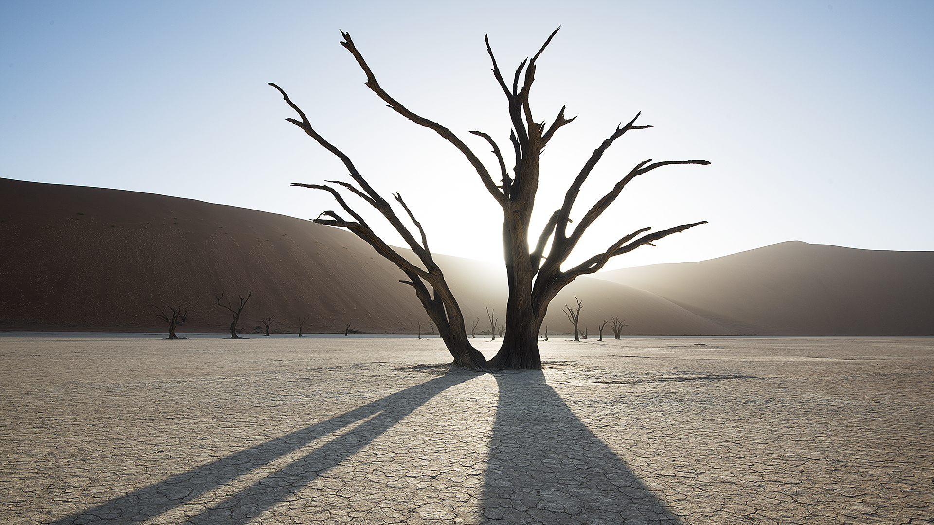 Ancient, Namibia