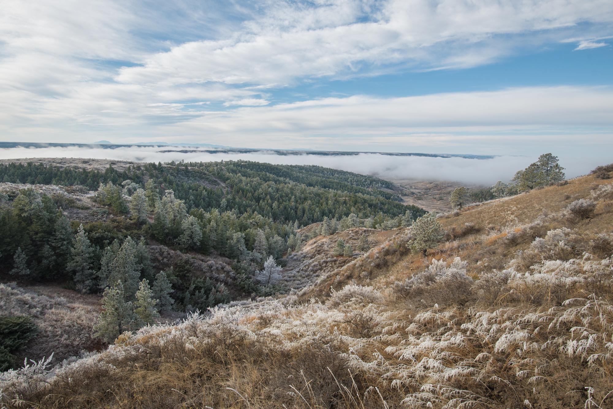 Rhys Morgan Images_American Prairie Reserve-7030.jpg