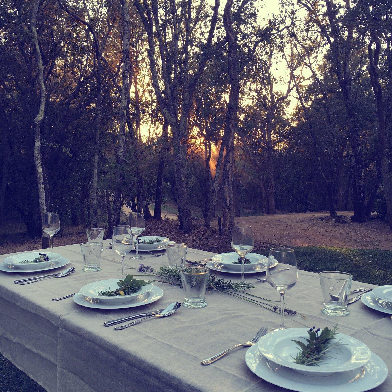 Travellur_ajacciosummer_luxury_group_holiday_dining.jpg