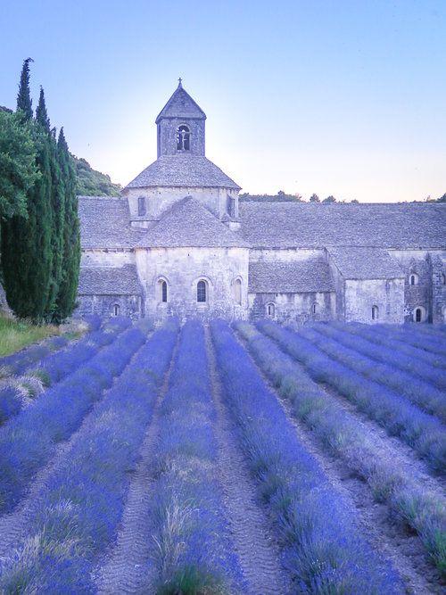 travellur_slow_travel_france_lavender_land_beauty_hill_12th_century_Abbey_Senaque_pilgrimage.jpg