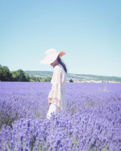 travellur_slow_travel_france_lavender_land.jpg