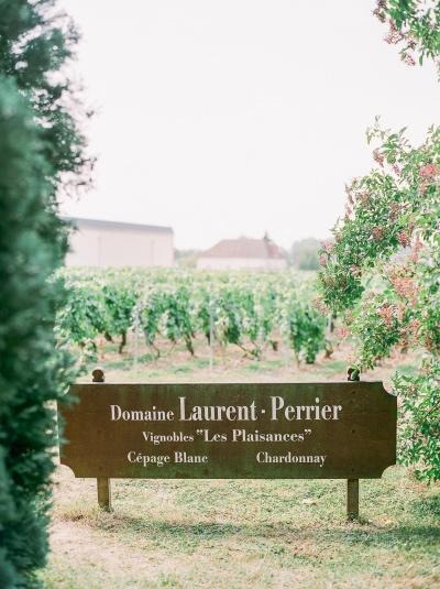Castles_&_Champagne_tour_France_vinyard.jpg