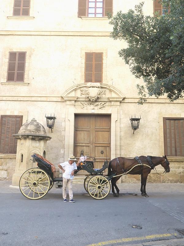 slow-travel-mallorca-Palma-carriage-rides