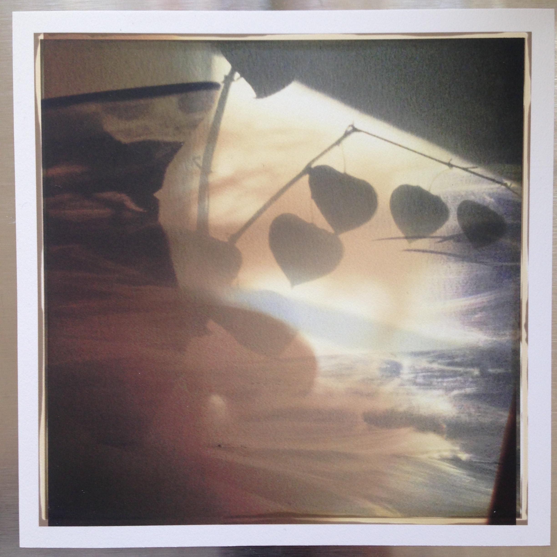 "6x6 Rochester, 6""x6"", Archival digital print, 2015"