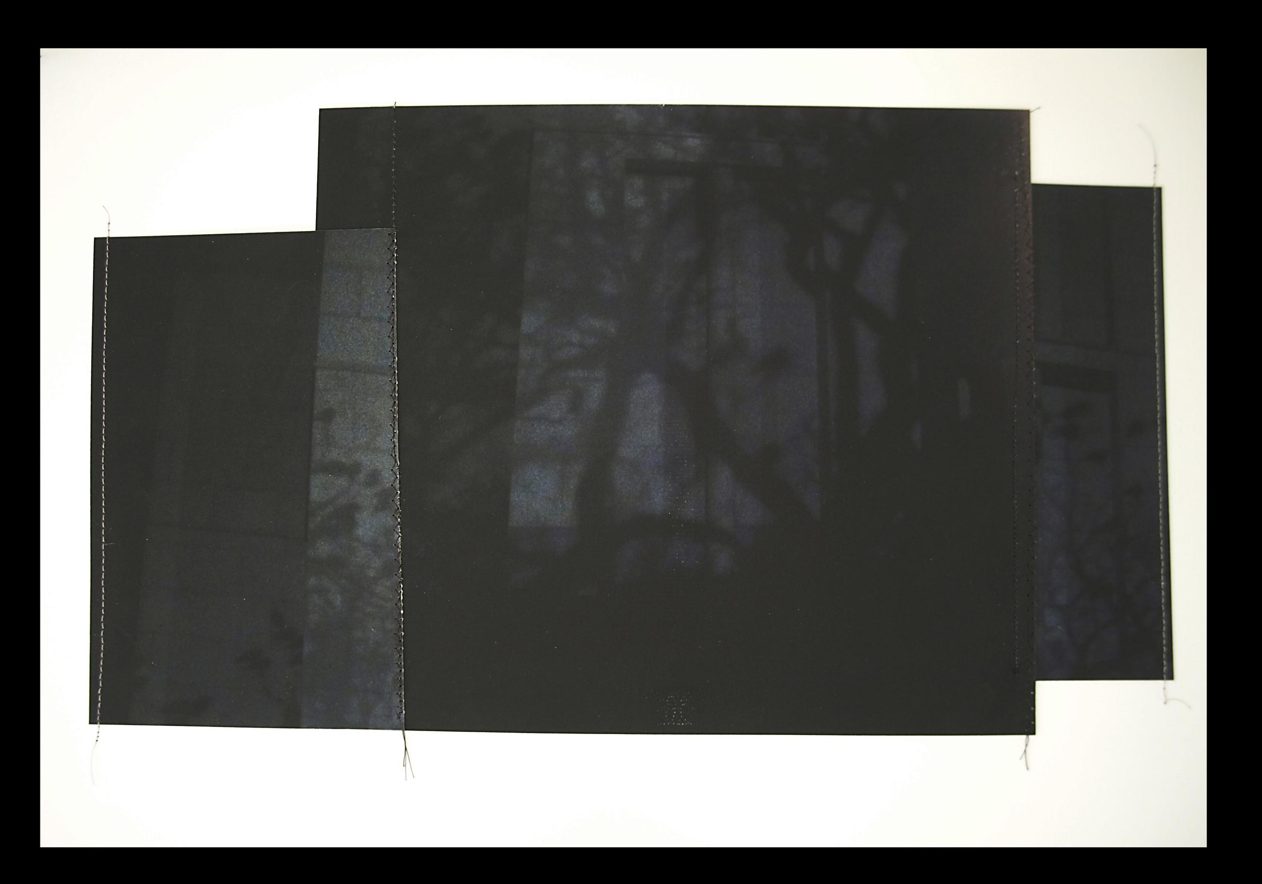 "Nightbirds, 11""x17"", Archival digital photograph, paper, silk thread, 2013, [sold]"