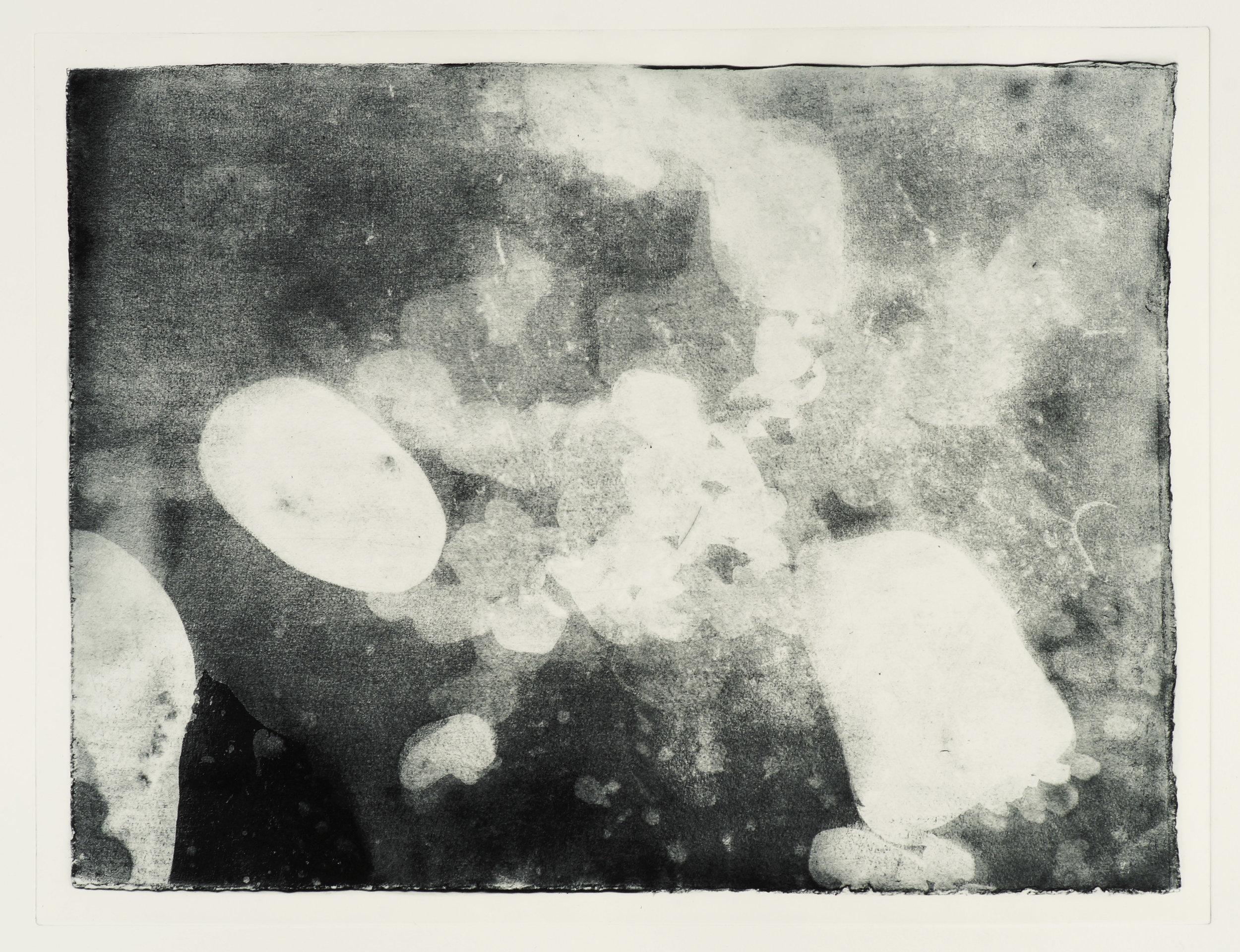 "Shoreline #3, photogravure, ed. of 3. 30""x22"", 2018"
