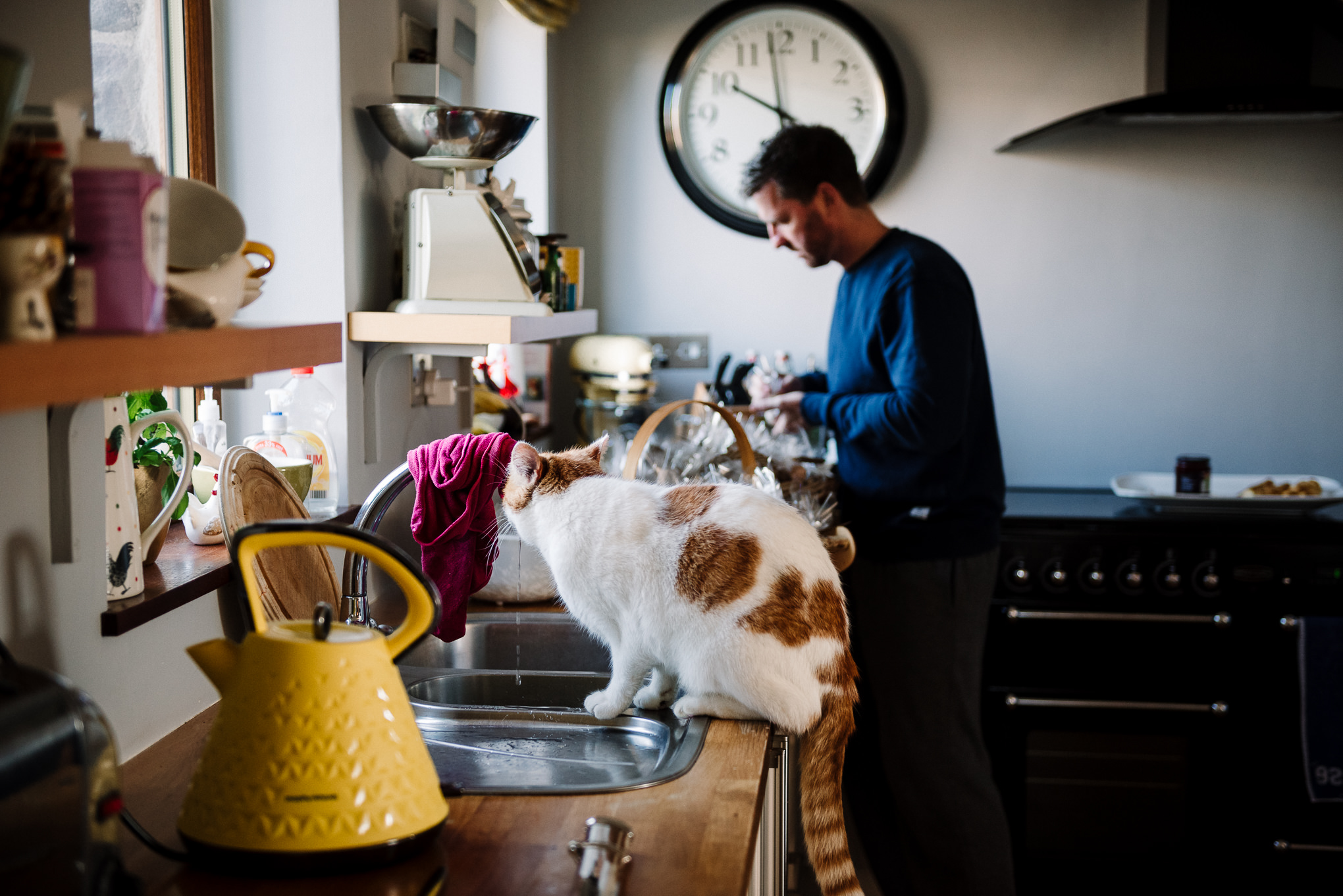 Documentary photo of the morning - cat drinking from the kitchen tap