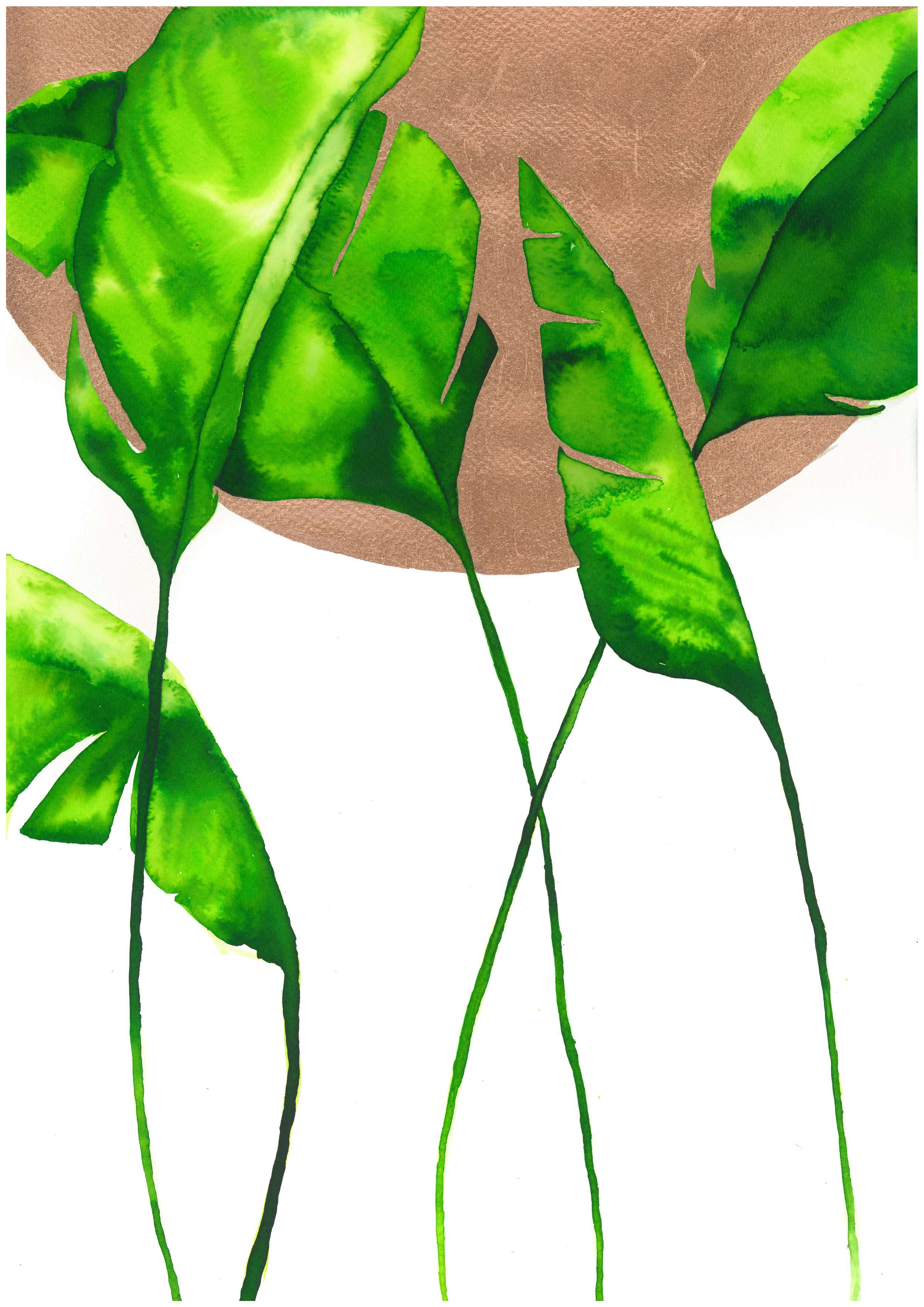 nadine-walker-illustration-blackgold-bronze-leaves.jpg