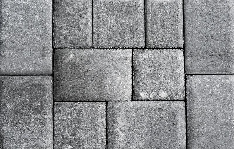 Spanish Moss (White Cement)