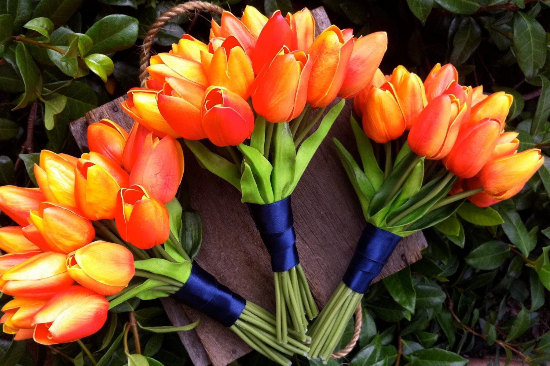 Photo credit:  onewed.com