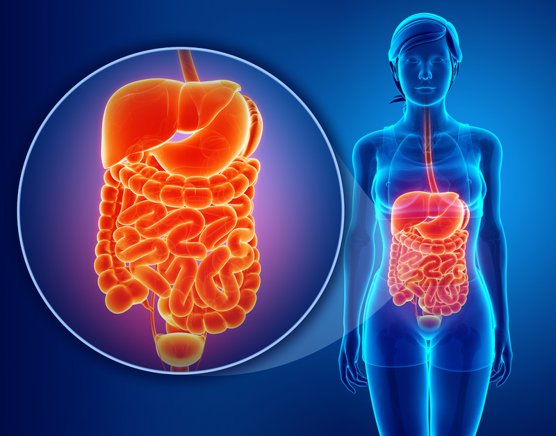DigestiveHealth-Calgary.jpg