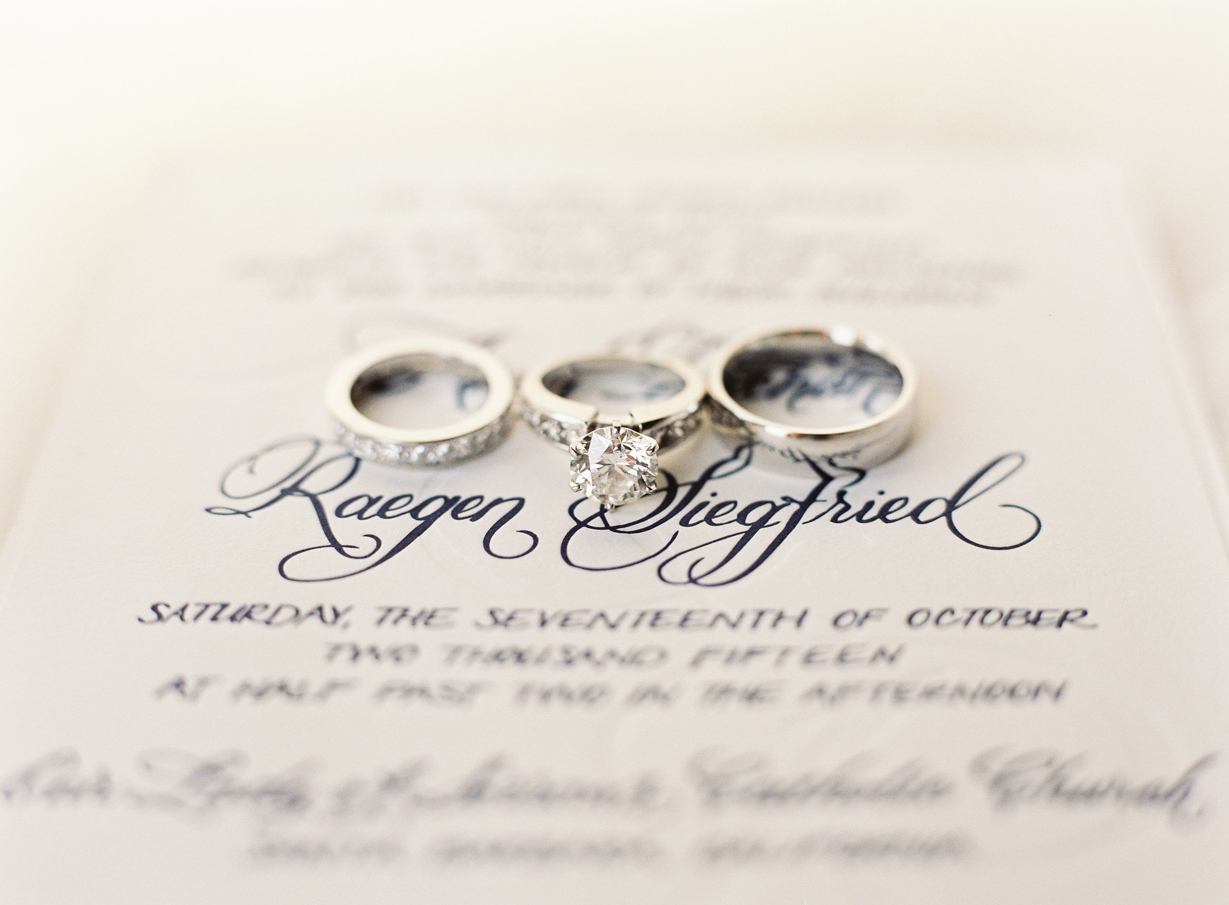 www.santabarbarawedding.com   Linda Chaja Photography   Santa Barbara Museum of Natural History Sea Center   Wedding Rings