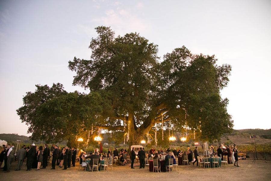 www.santabarbarawedding.com   A. Blake Photography   Reception
