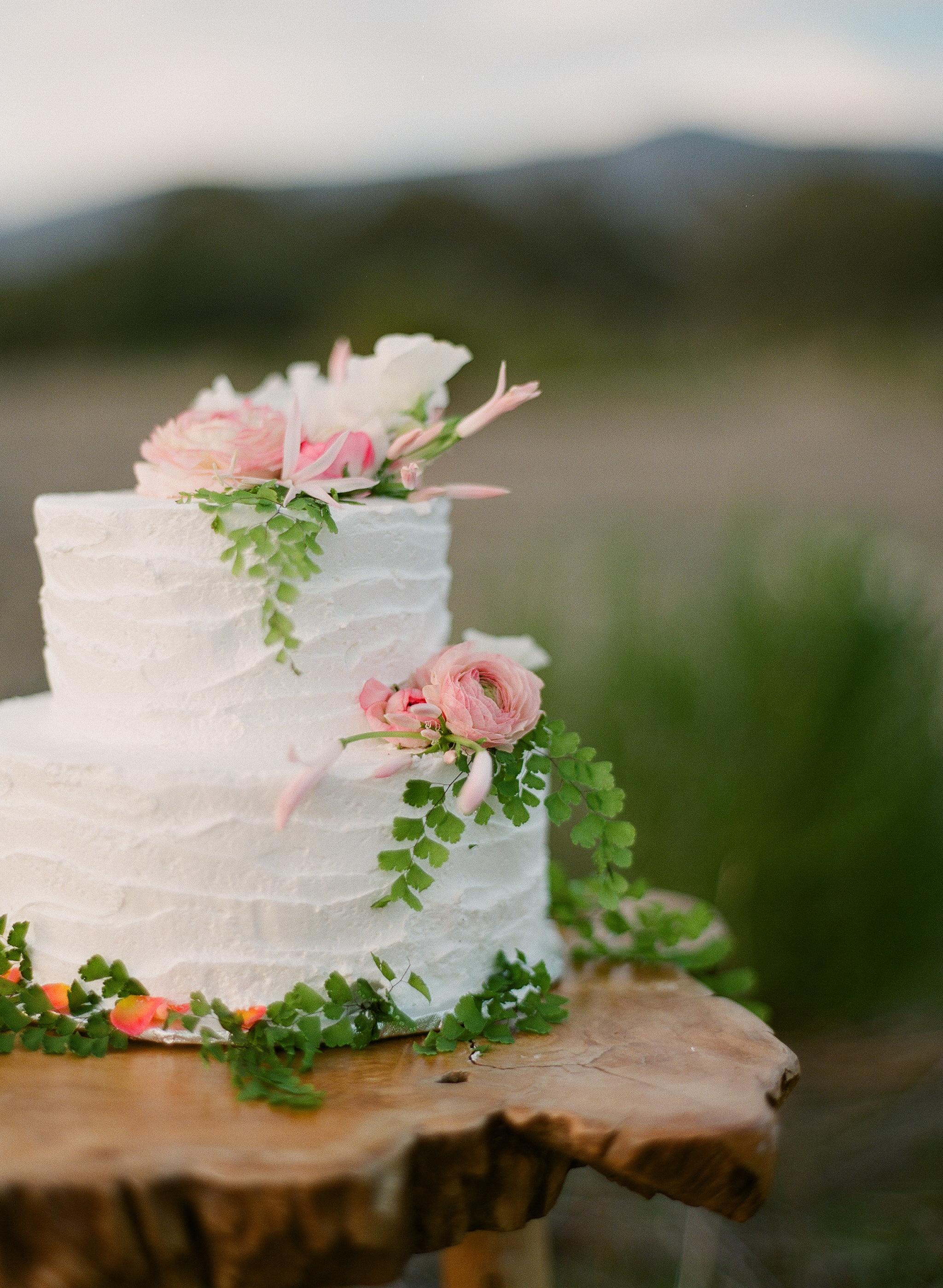 www.santabarbarawedding.com   Megan Sorel Photography   Wedding Cake