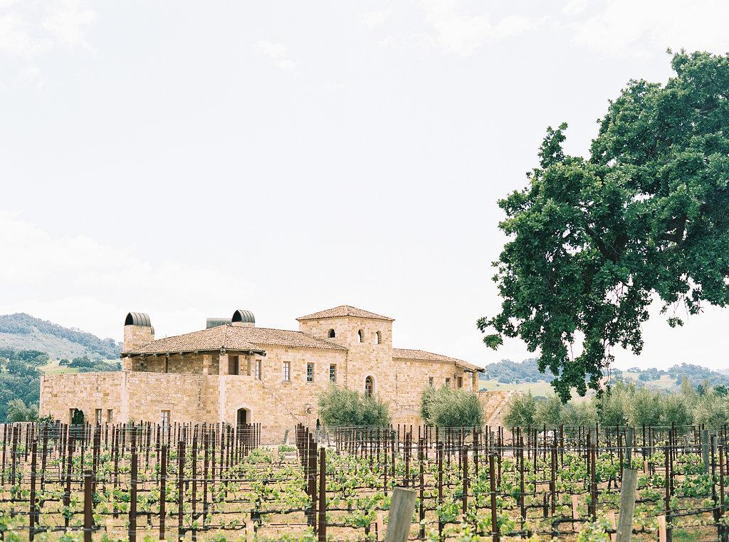 www.santabarbarawedding.com | Sunstone Winery | Jen Rodriguez | Vineyard