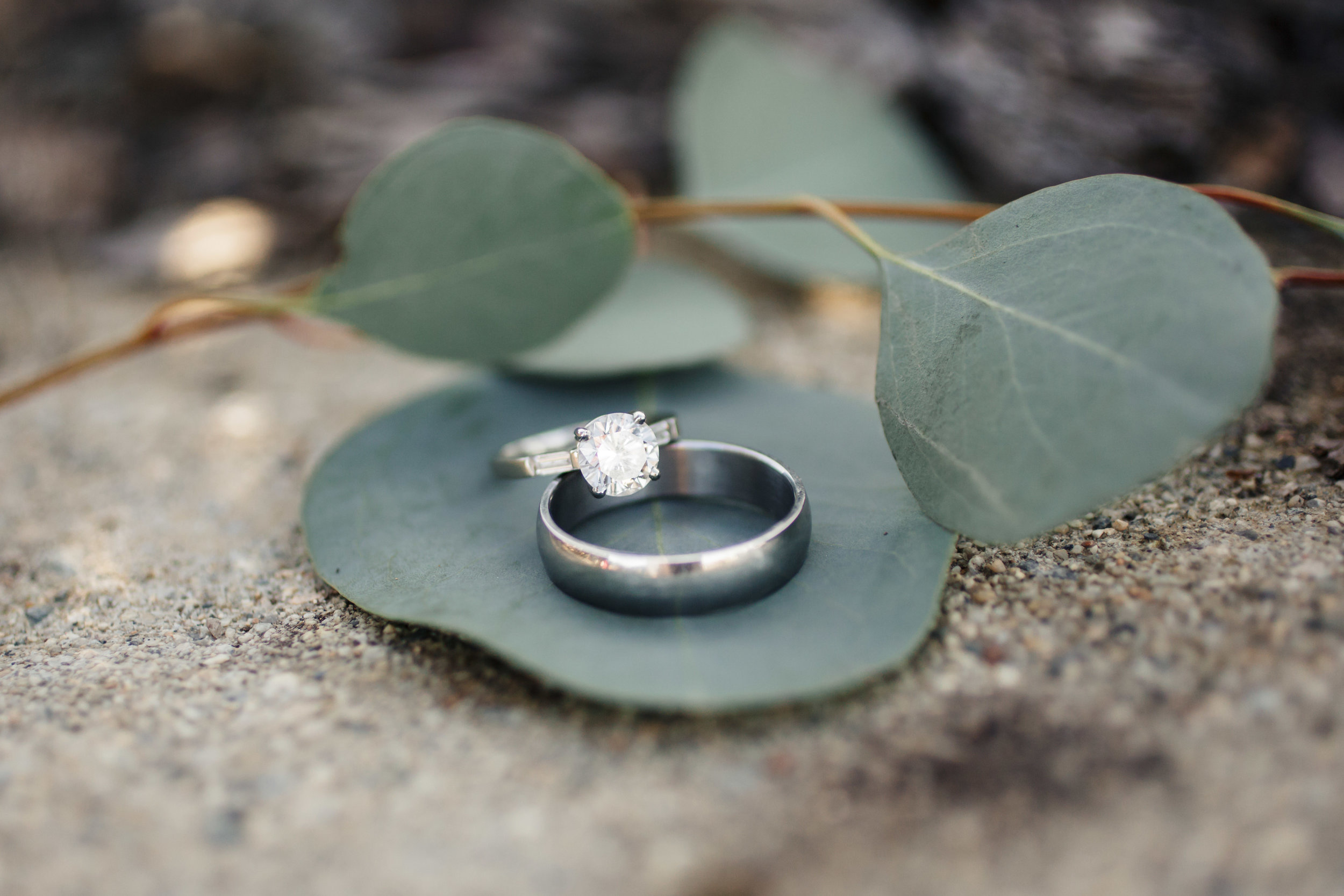 www.santabarbarawedding.com   Molly + Co   Sogno Del Fiore   Wedding Rings