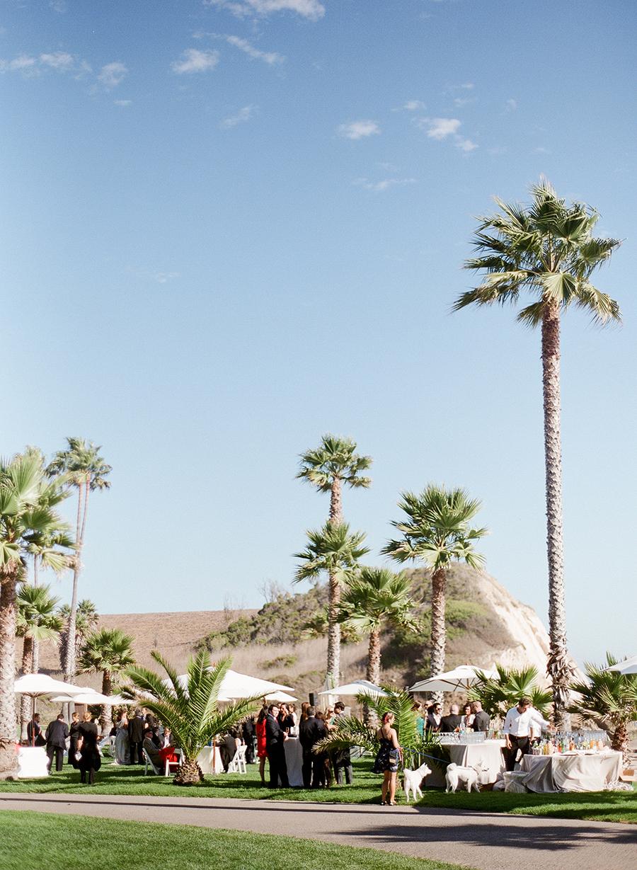 www.santabarbarawedding.com   Dos Pueblos Ranch   Soigne Productions   Lacie Hansen   Cocktail Hour