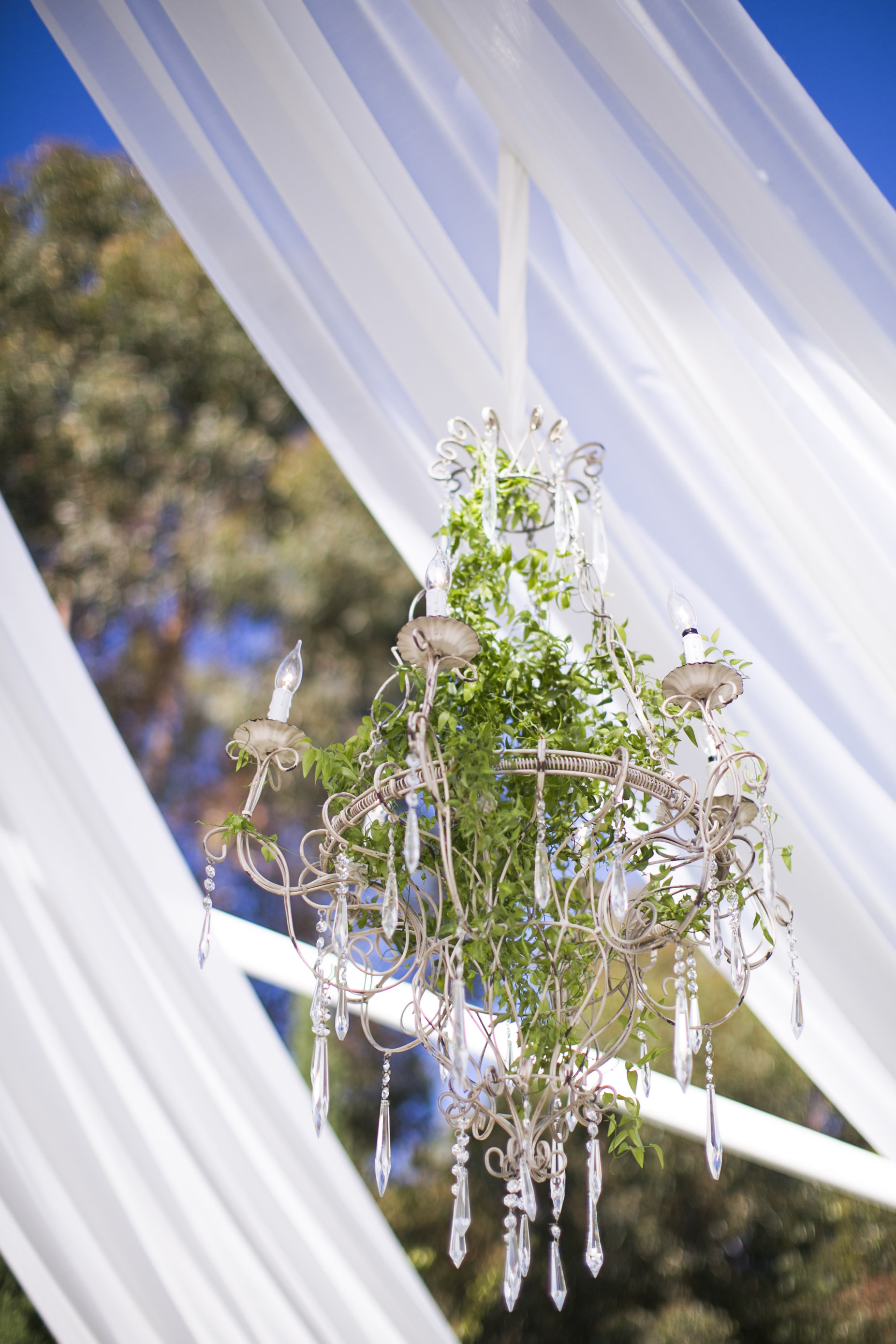 www.santabarbarawedding.com | Event of the Season | San Ysidro Ranch | Birds of a Feather | Chandelier