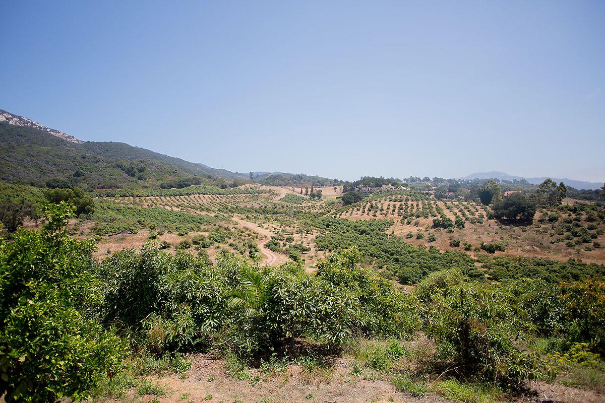 www.santabarbarawedding.com   Phillip Van Nostrand   Casitas Valley Farm   Venue