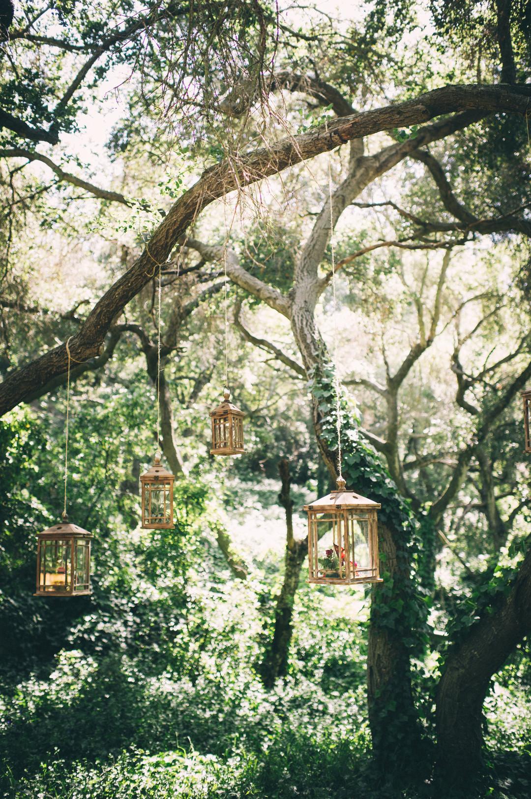 www.santabarbarawedding.com | Sarah Katherine Davis Photography | Santa Barbara Museum of Natural History | Wild Heart Events | Party Pleasers | Lanterns Hanging from Trees